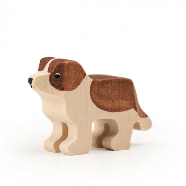 Trauffer Hund Barry Welpe stehend