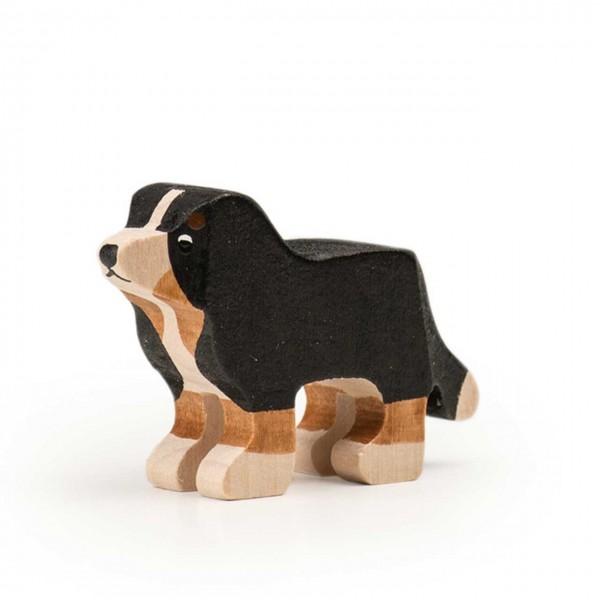 Trauffer Berner Sennenhund Welpe stehend