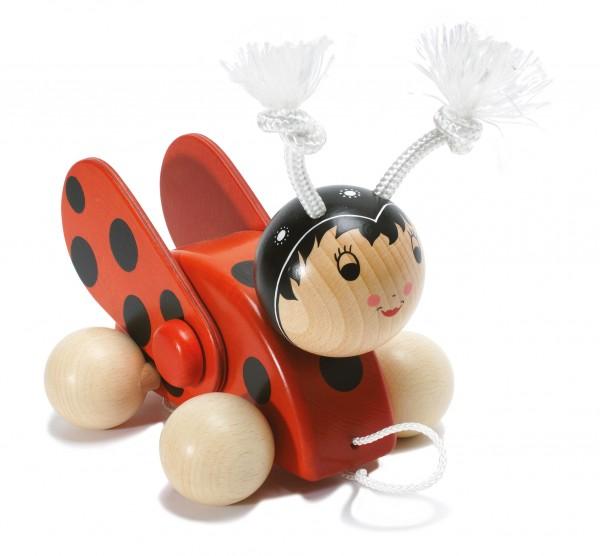 Käfer Cecile mit Flügeln