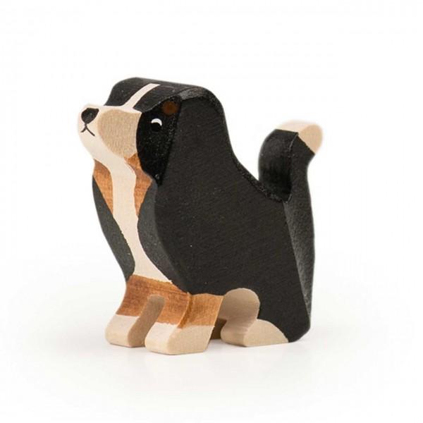 Trauffer Berner Sennenhund Welpe sitzend